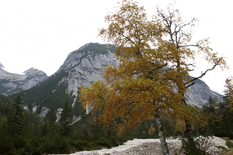 Herbststimmung kommt langsam auf
