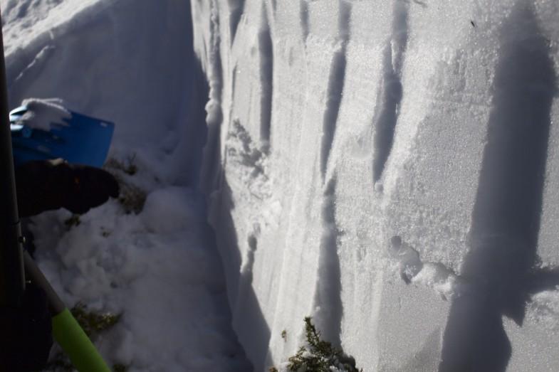 Schneedeckenuntersuchung, momentan könnte es für diesen Kurs nicht besser sein...