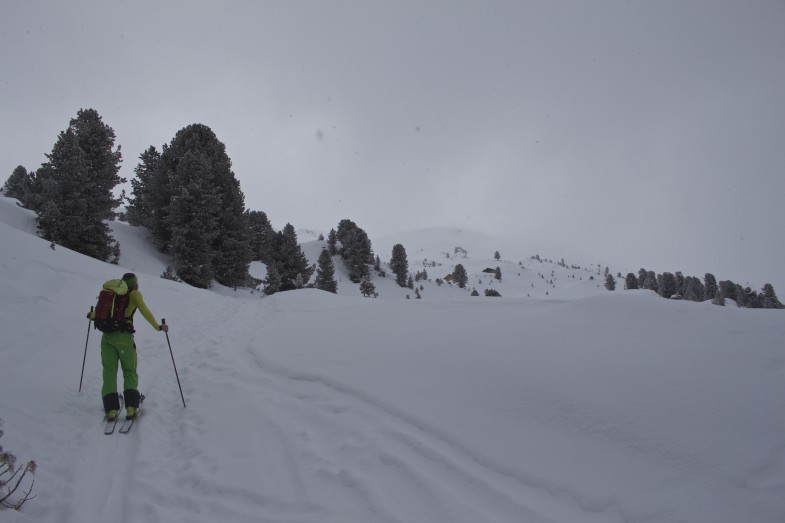 Bald am Kamm, Schnee wird dann wieder weniger.