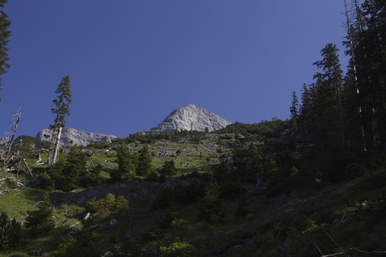 Der Gipfel des Guffert