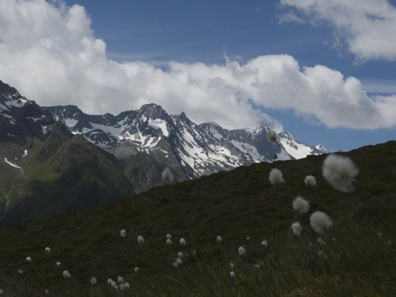 Ausblick ins Tourengebiet Franz See Hütte