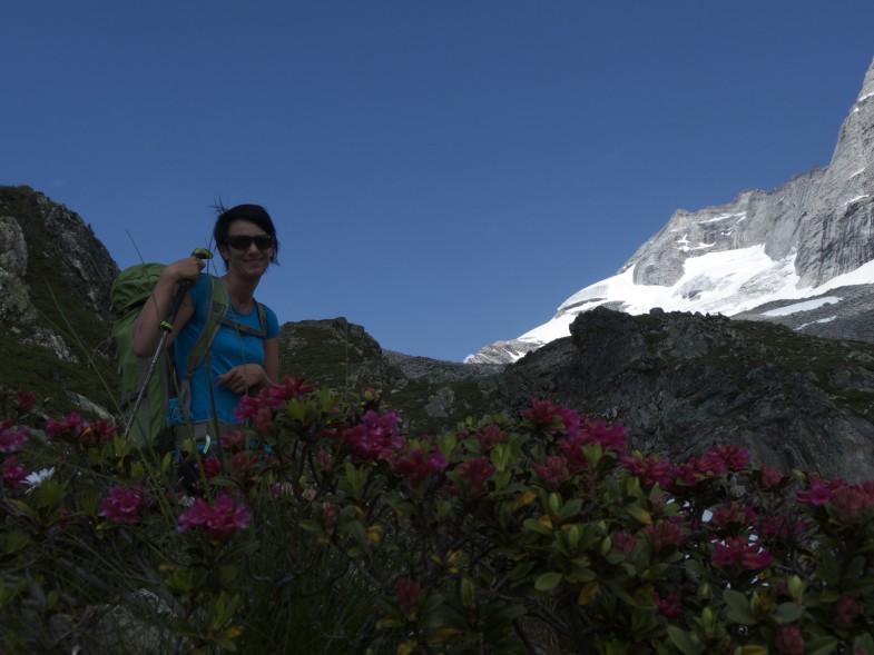 Blumenkind mit Olperer im Hintergrund