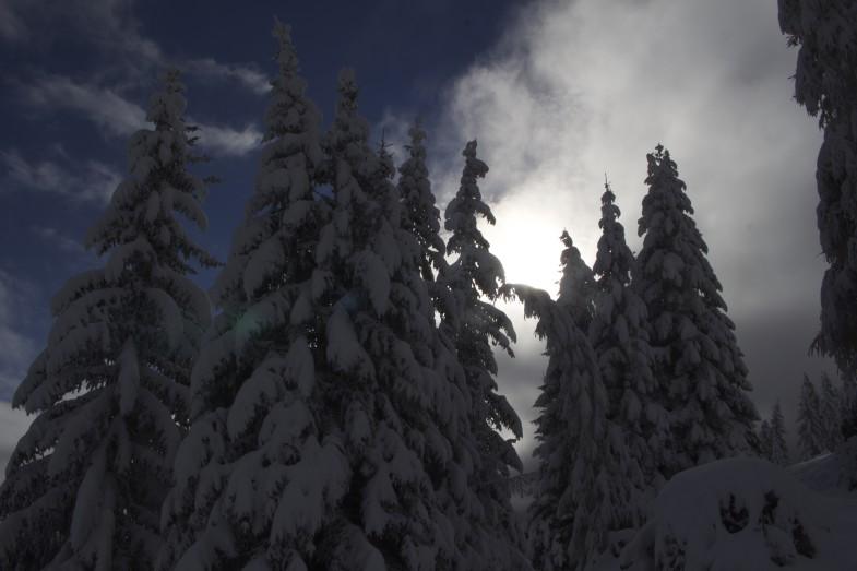 Oberhalb der Raitiser Alm, Vorboten des Winters