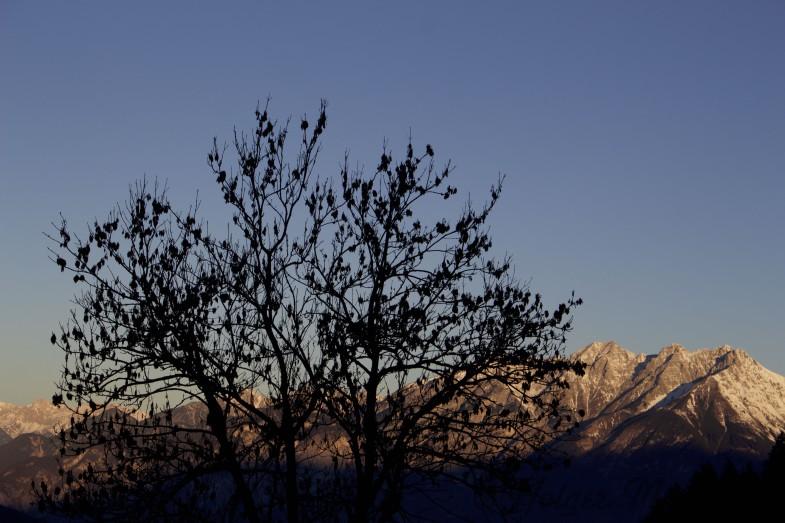 Am Morgen in Patsch mit Blick zum Vorderen Brandjochkreuz- Hohe Warte und Kleiner Solstein