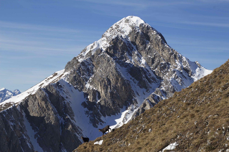 Thaurer Jochspitze- Lattenspitze