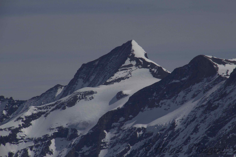 Skitourenstudie Tag 5