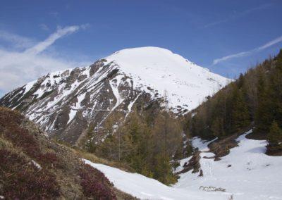 Blick retour aufs Leintuch- noch geht es mit Skiern
