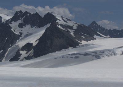 Weitläugiger Gepatschferner mit Dahmannspitze und Fluchtkogel