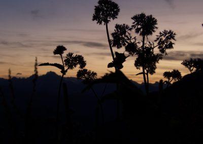 Sonnenuntergang an der Gaerer Hütte