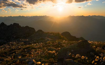 Abends auf den Kreuzjochkogel- Stubaier Alpen