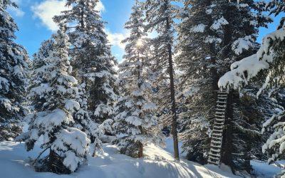 Irgendwo im Voldertal- Tuxer Alpen